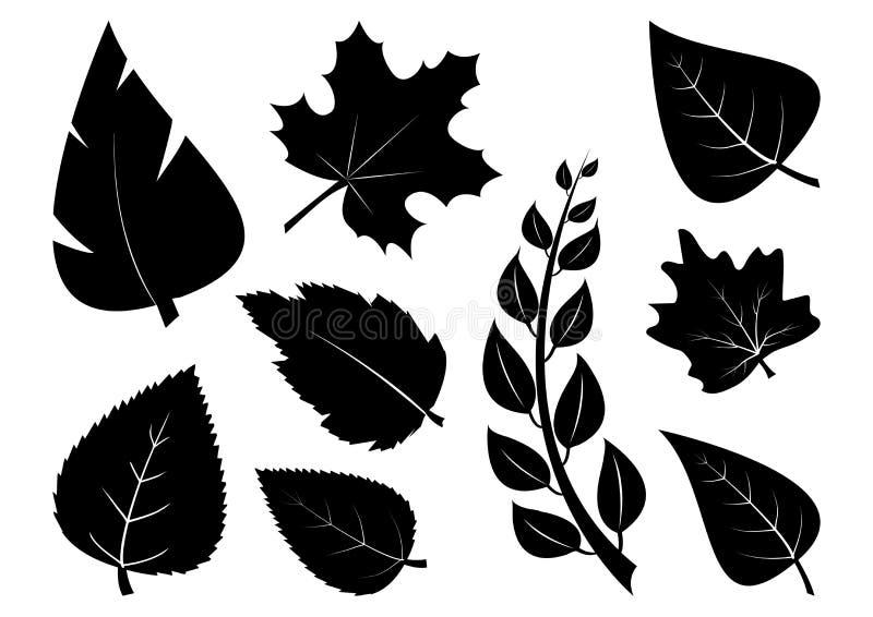 Set of different leaves, black silhouettes. Vector. Illustration stock illustration