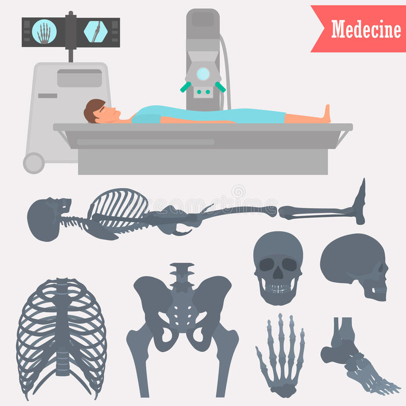 Set of different parts human skeleton icons. Man x-ray examination illustration for web and mobile design. Set of different parts human skeleton icons. Man x-ray stock illustration