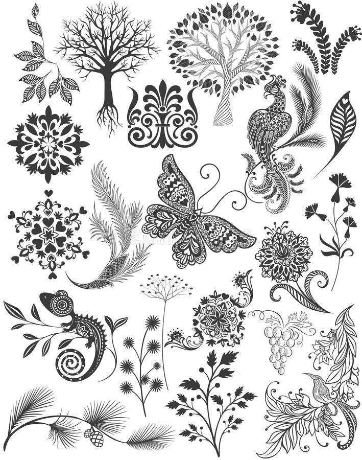 Set different patterns and decorations. Graphic drawings Sketches. Plants, nature, birds, trees, butterfly, flowers, vector illustration