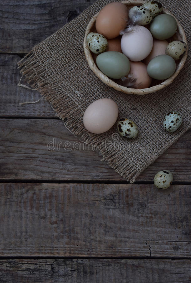 Set of different types birds eggs from chicken, pheasant and quail with feathers on a wooden background. royalty free stock photos