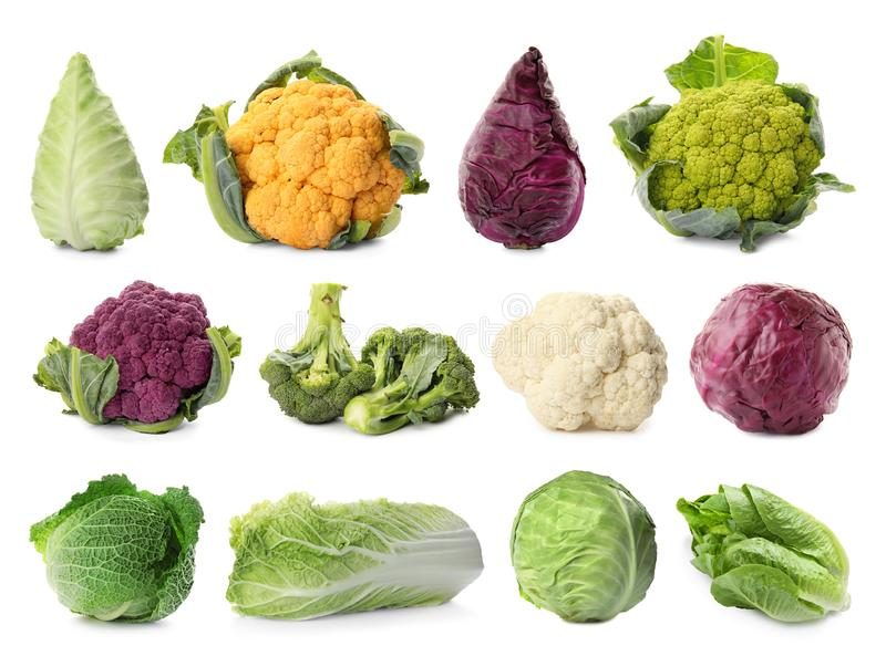 Set with different types of cabbage. On white background royalty free stock photography