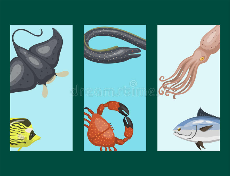 Set of different types of sea animals cards illustration tropical character wildlife marine aquatic fish vector illustration