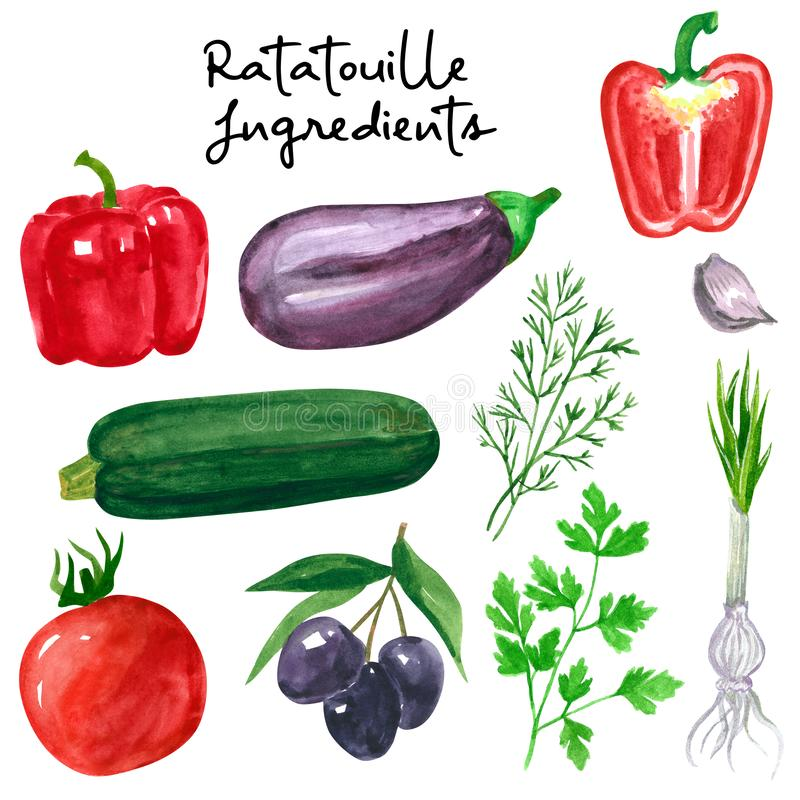 Set of different vegetables, hand drawn watercolor illustration. Salad ingredients. Cucumber, tomato, parsley, dill,pepper, olives vector illustration