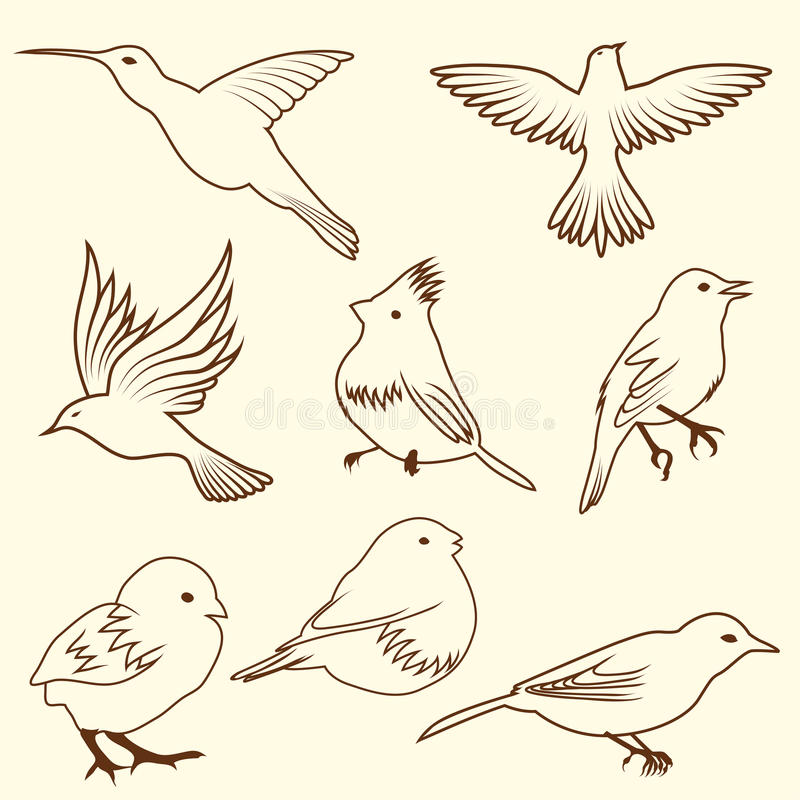 Set of differnet sketch bird stock photography