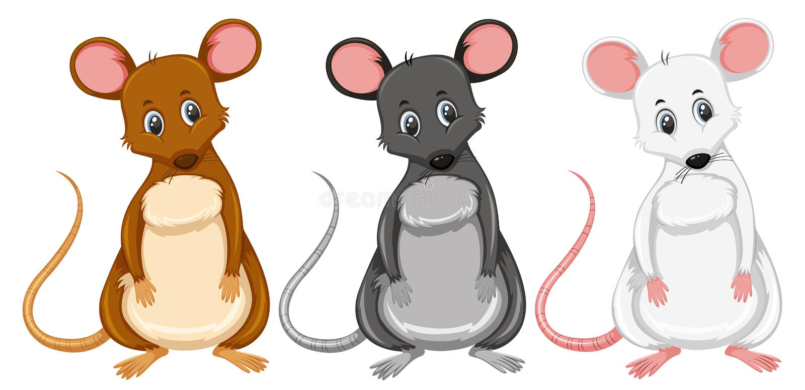A set of differnt color rat stock illustration