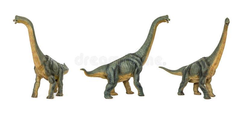 Set Dinosaur long necked sauropod diermibot breed name Brachiosaurus stock illustration