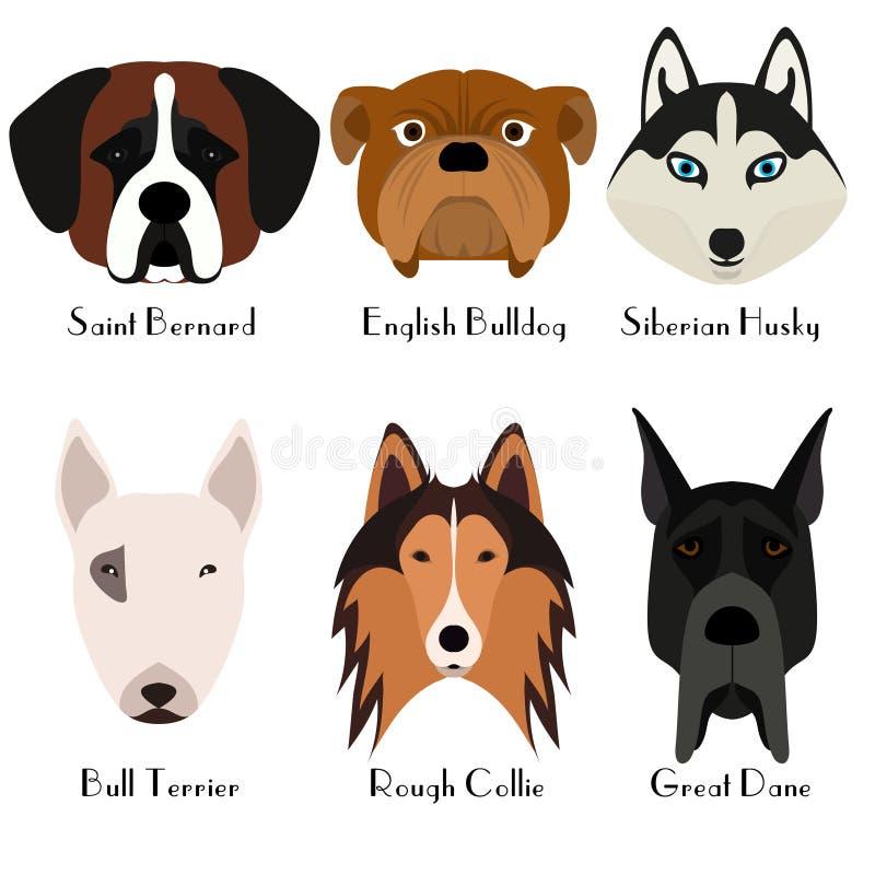 Set of 6 dog's head. Flat design. vector illustration