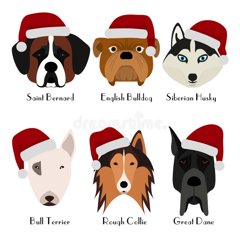 Set of 6 dog`s head. Flat design. Pets. Cute doggies. Icon or logo. Cartoon character royalty free illustration