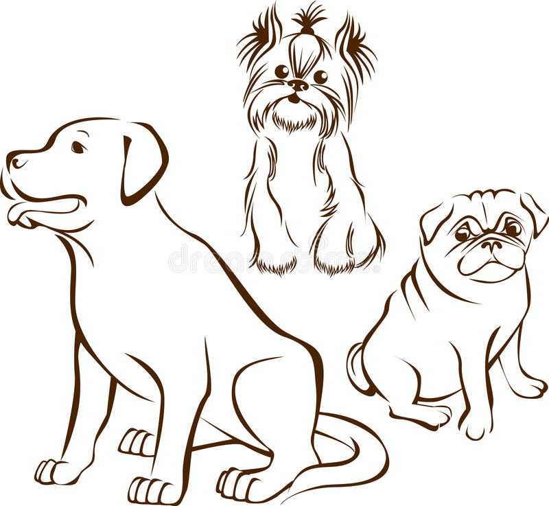 Set of dogs breeds stock photography