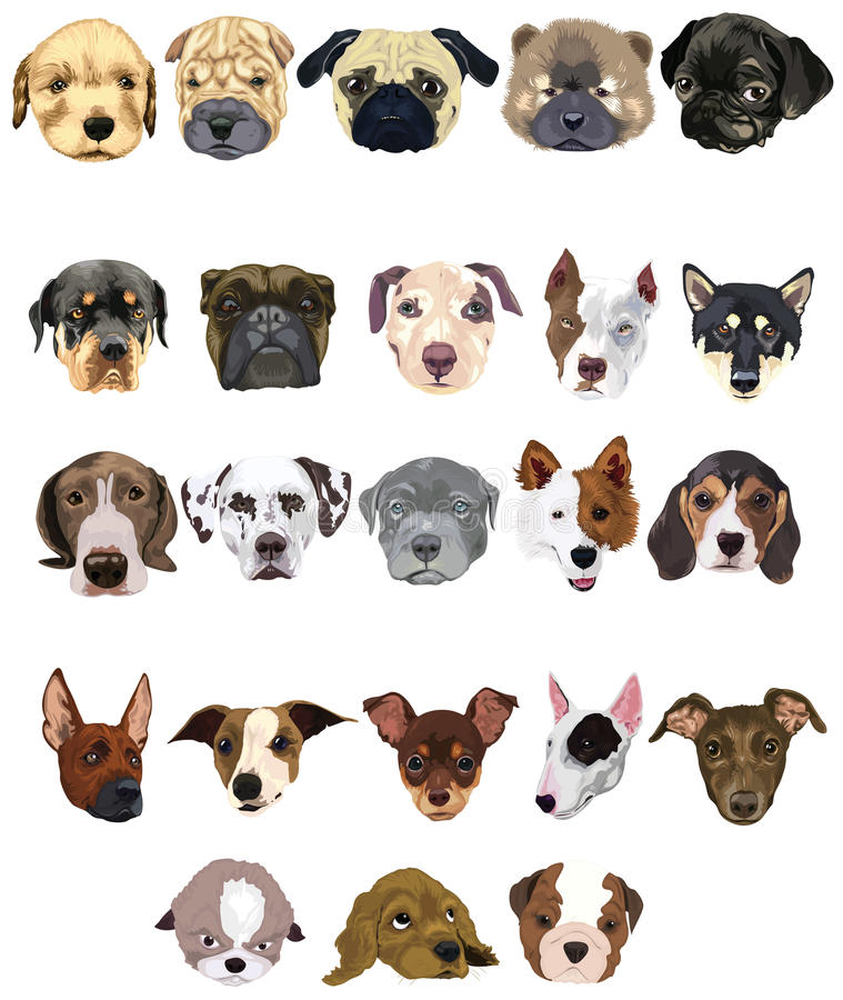 Set of dogs royalty free illustration