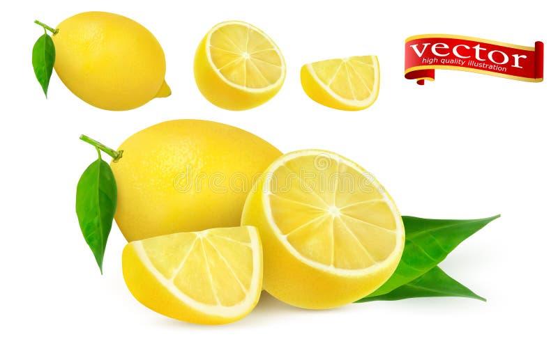 Set dojrzała soczysta cytryna cała i lobule realistyczny wektorowy wysoki szczegół Cytryna soku Świeża owoc, 3d wektoru ikona royalty ilustracja