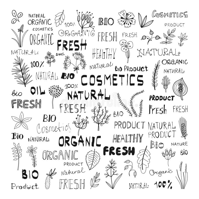 Set of doodle herbs, plants, and the lettering: natural, organic, cosmetics, fresh, bio, product. Set of doodle herbs, plants, and the lettering: natural royalty free illustration