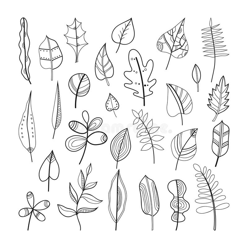 Set Of Doodle Leaves, Plants For Coloring Book Stock Vector ...