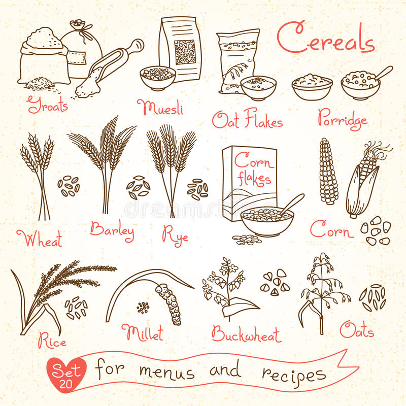 Set drawings of cereals for design menus, recipes and packing. Flakes, groats, porridge, muesli, cornflakes, oat, rye royalty free illustration