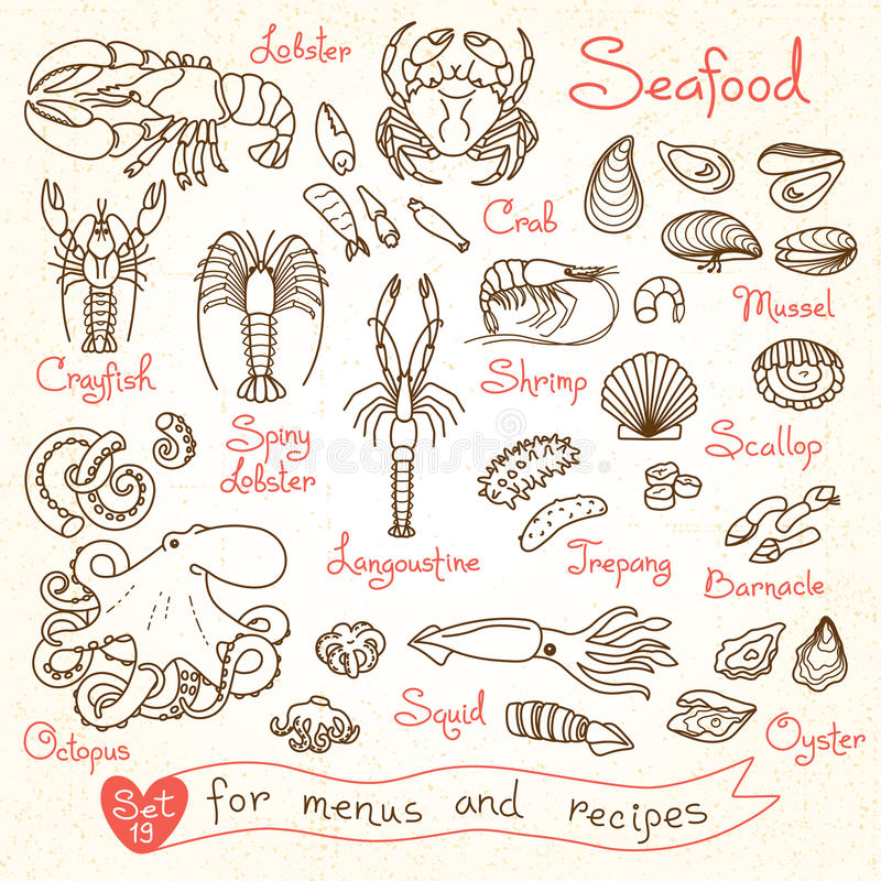 Set drawings of seafood for design menus, recipes, packaging and advertising. royalty free illustration