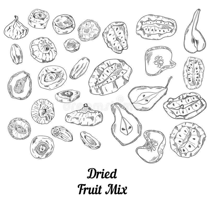 Set of dried fruit black and white stock image