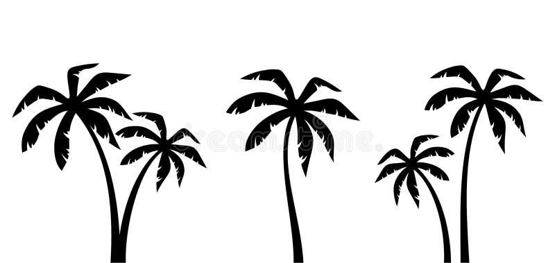 Set drzewka palmowe Wektorowe czarne sylwetki royalty ilustracja
