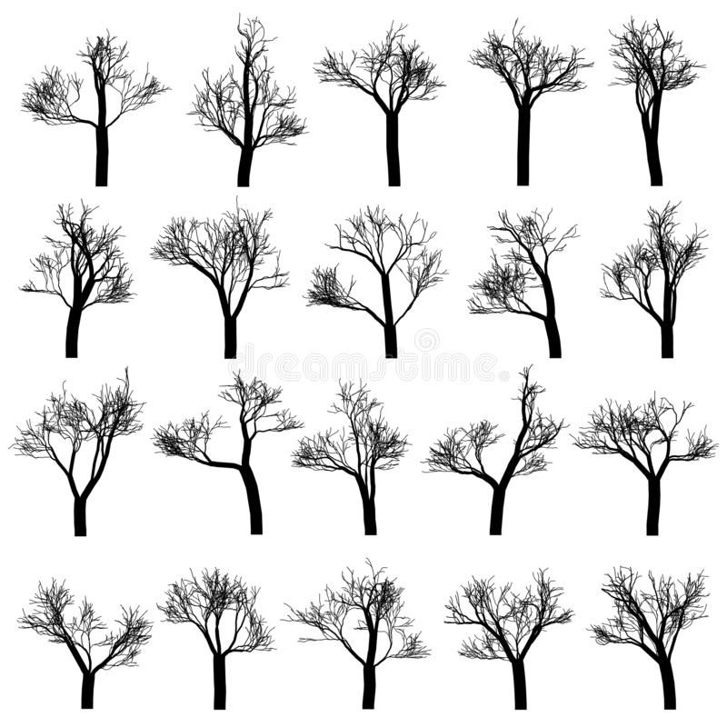 Set drzewne sylwetki, ręka rysujący wektorowi projektów elementy ilustracji