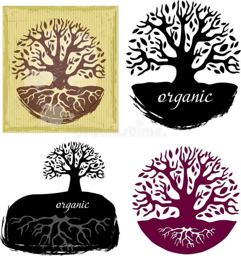 Set Drzewni symbole ilustracji