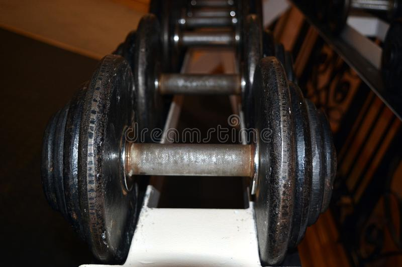 Set of dumbbells in the gym royalty free stock images