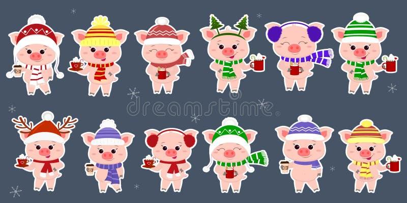 Set dwanaście majcherów z świniami w różnych nakrętkach i szaliku z filiżankami różni gorący napoje w białym uderzeniu Szczęśliwy ilustracji