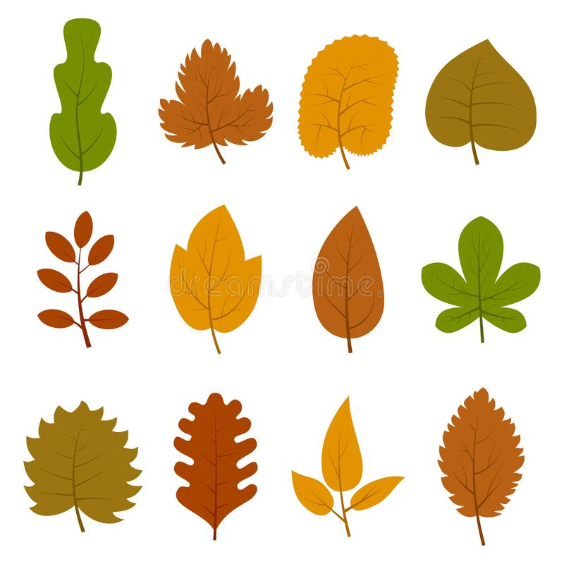 Set dwanaście różnych jesieni liści odizolowywających na białym tle ilustracja wektor