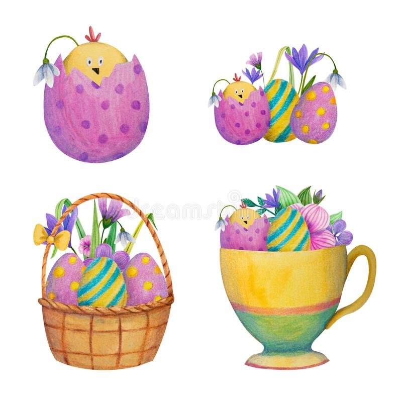 Set of easter or birthday yellow chickens in the eggs, basket, cup. With flowers. Hand drawn watercolor and colored pencil illustration royalty free illustration