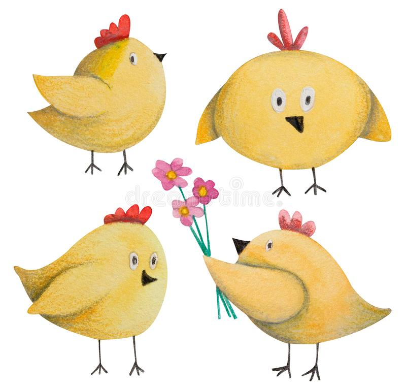 Set of easter or birthday yellow chickens. Hand drawn watercolor and colored pencil illustration vector illustration