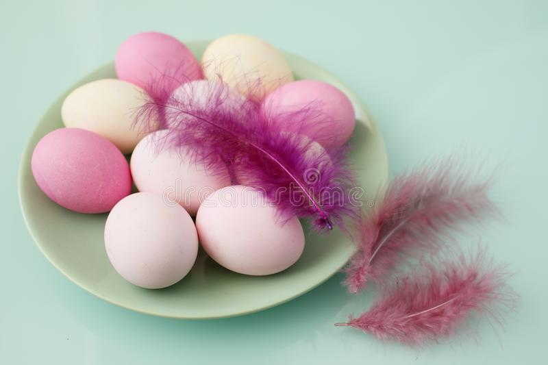 Set of Easter eggs and decorative feathers royalty free stock image