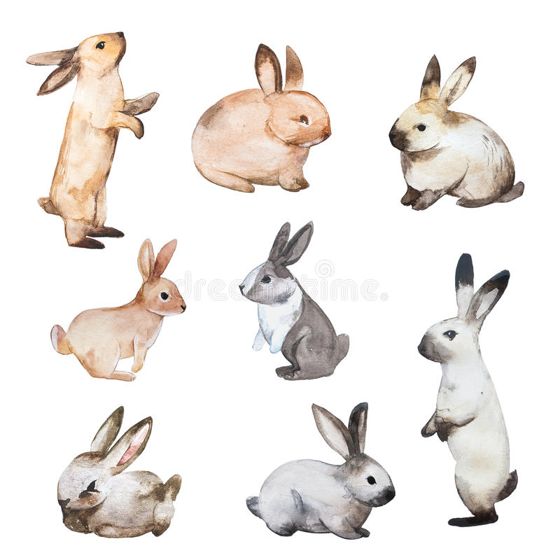 Set of Easter rabbits. Hand drawn sketch and watercolor illustrations stock illustration