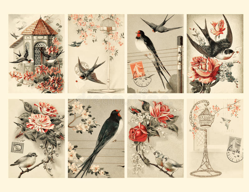 Set of Eight Vintage Style Bird Tags. Set of Eight Vintage Style Bird Collage Sheet of tags featuring birds, flowers and bird cages