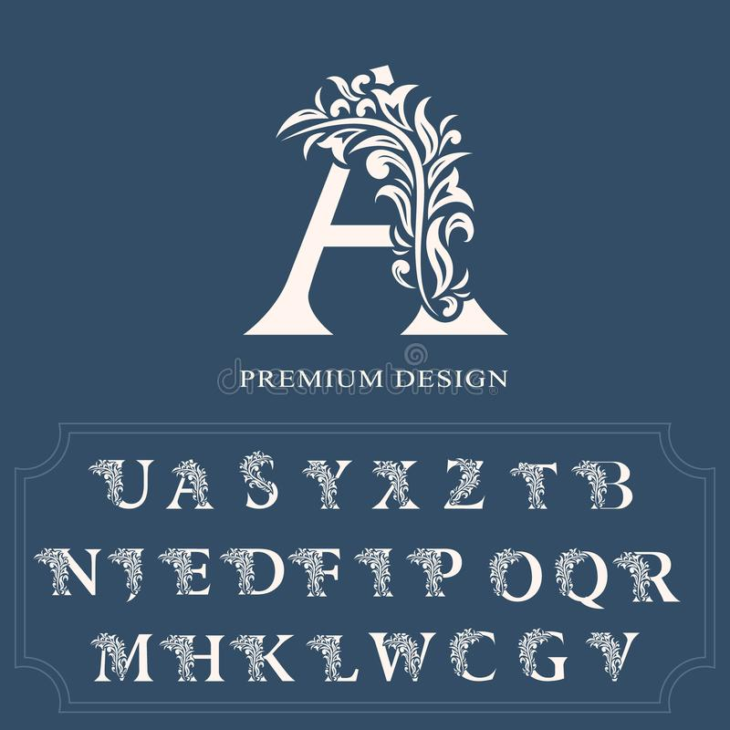 Set of elegant letters. Graceful luxury style. Calligraphic beautiful logo. Vintage drawn alphabet emblem for book design, brand n. Ame, business card stock illustration