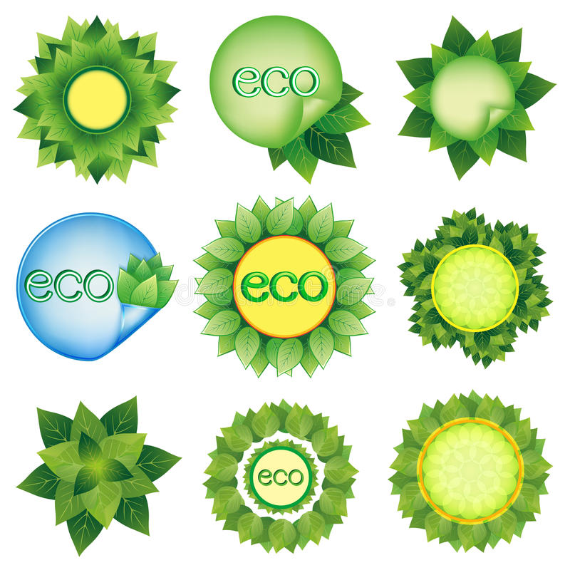 Set of elements for Eco design vector. Set of fresh green leaves, Eco design decorative elements, isolated on white background. Vector elements for design vector illustration