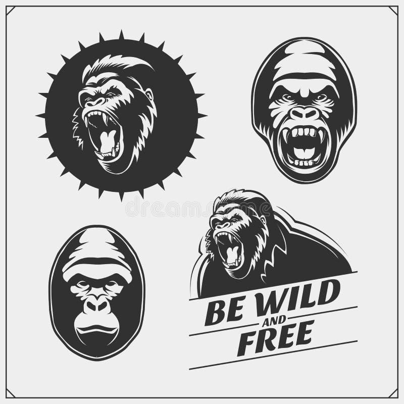 Set of emblems with gorilla for a sport team. Vector monochrome illustration royalty free illustration