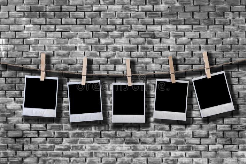 Set emtpy Filmfelder im Seil lizenzfreie stockfotos