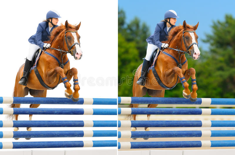 Set - equestrian sport: show jumping royalty free stock images