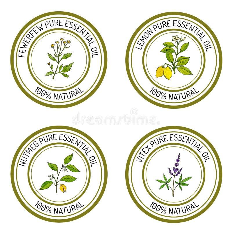 Set of essential oil labels: lemon, fewerfew, nutmeg, vitex. Vector illustration vector illustration