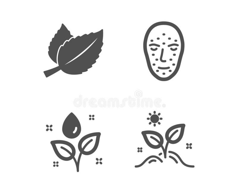 Face biometrics, Plants watering and Mint leaves icons. Grow plant sign. Vector stock illustration