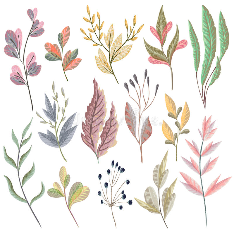 Set with fantasy plants and leaves. Decorative floral design elements. For invitation, wedding or greeting cards. Hand drawn vector illustration in watercolor royalty free illustration