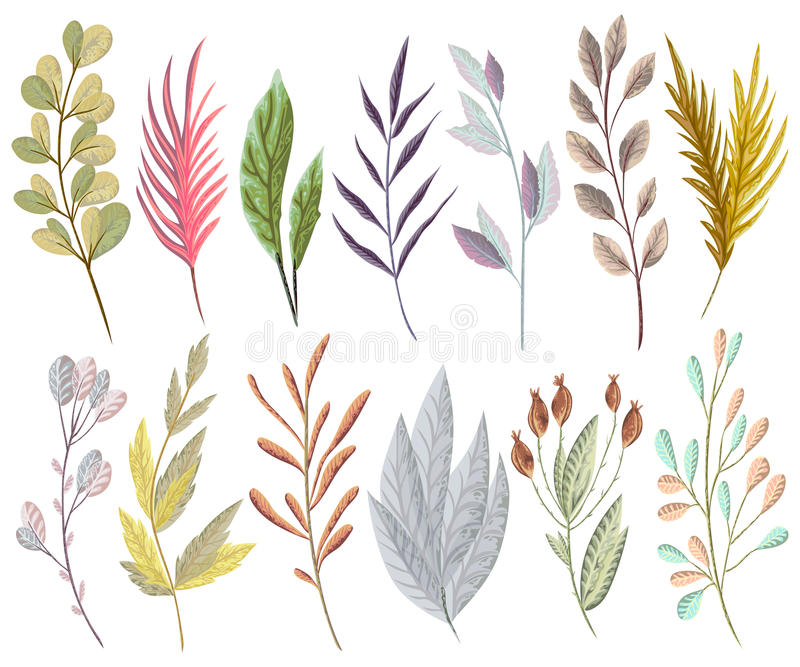 Set with fantasy plants and leaves. Decorative floral design elements. For invitation, wedding or greeting cards. Hand drawn vector illustration in watercolor vector illustration