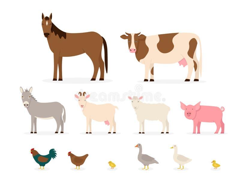 Set farm animals isolated. Set farm animals. Flat vector cartoon illustration isolated white background royalty free illustration