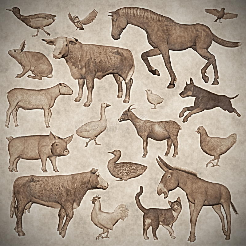 Download Set Of Farm Animals Vintage Style