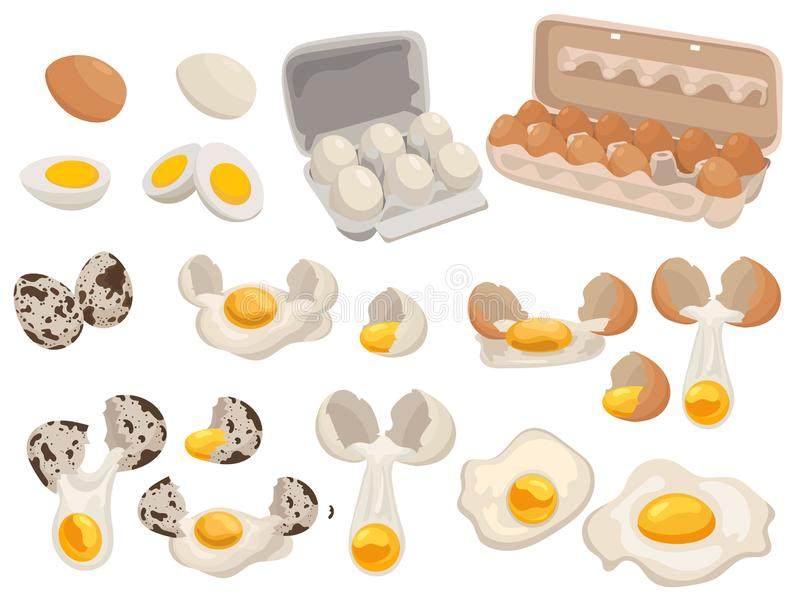 Set of farm eggs for food. Collection of chicken and quail eggs in the package. Vector illustration of food for shops. stock illustration