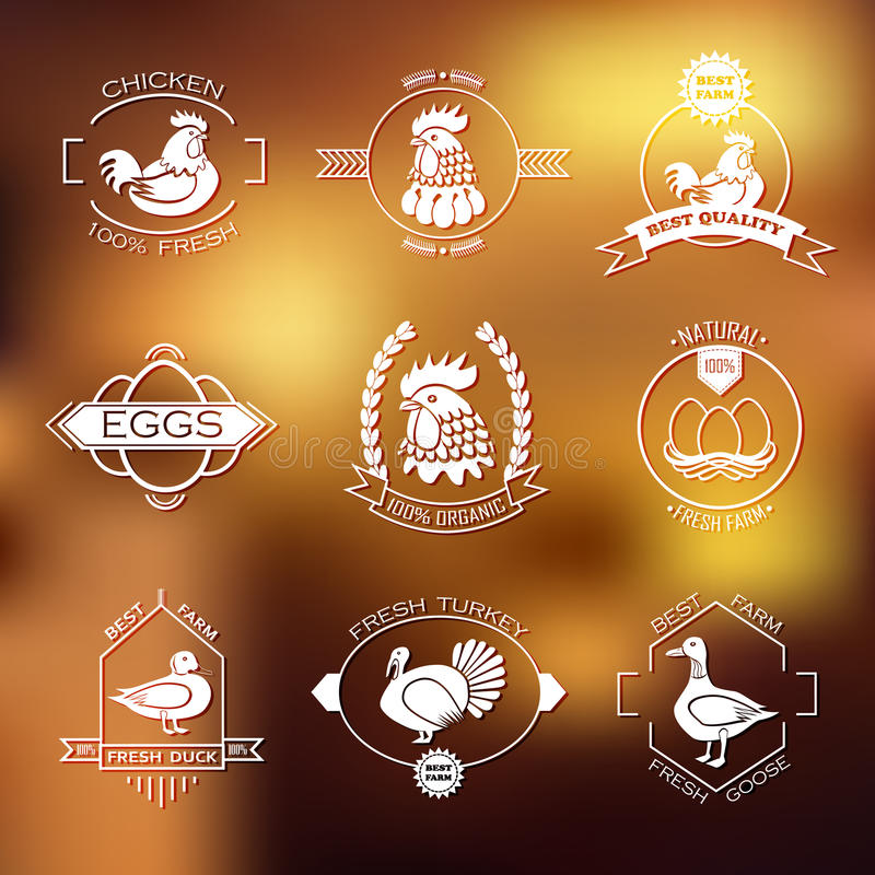 Set farma drobiu logo, emblemat Kurczak, indyk ilustracji