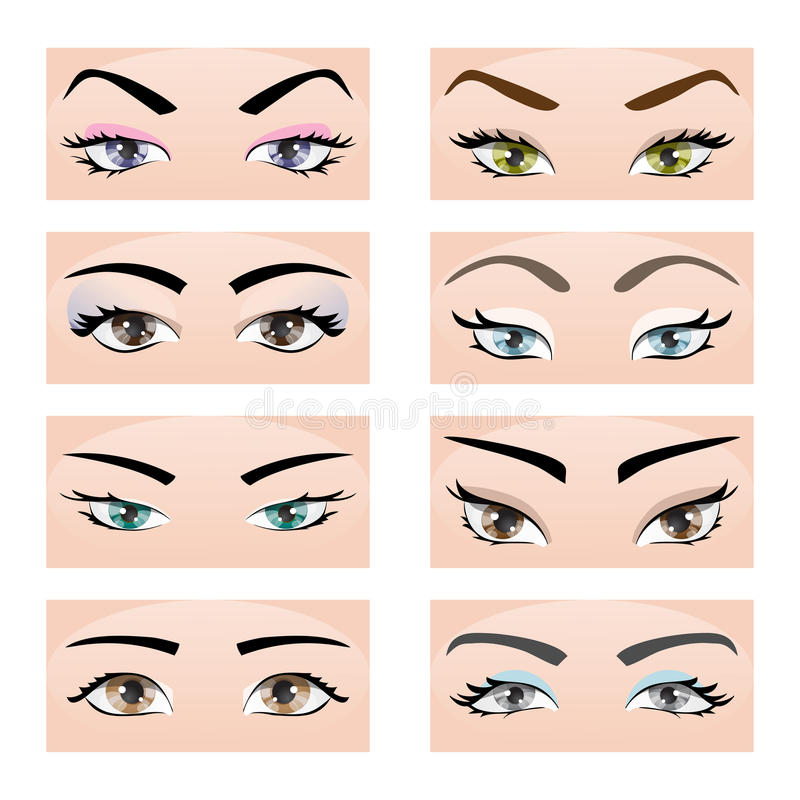 Set Of Female Eyes And Eyebrows. Vector Illustration ...