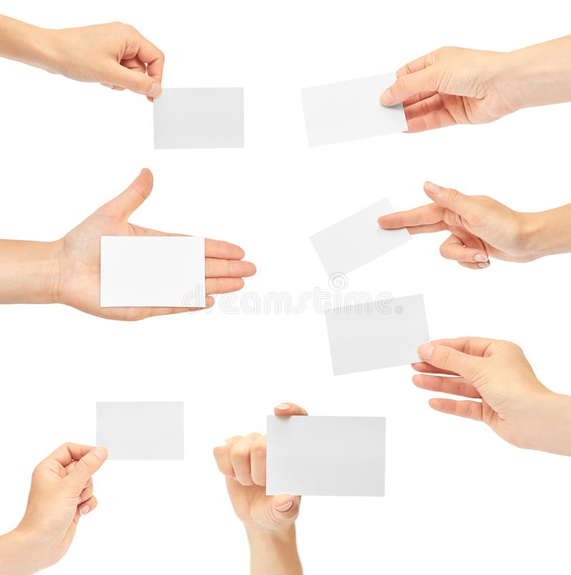 Set of Female hands hold a business card. Isolated on white background. copy space, template stock photography