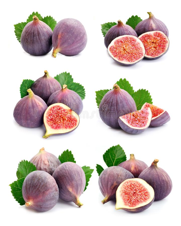 Set of figs fruits royalty free stock images