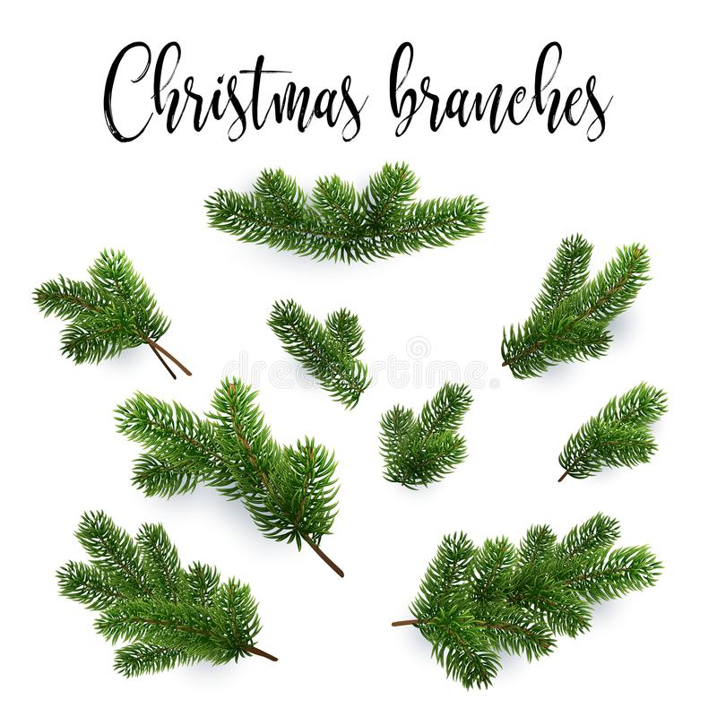Set of fir branches. Christmas tree, pine, conifer. Realistic detailed vector illustrations. Symbol of Christmas and New Year isolated on white background for vector illustration