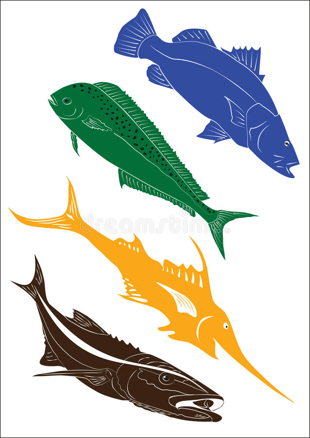 Set of 4 fish illustrations. Blue barramundi, green dolphinfish mahi mahi, yellow marlin and brown fish isolated on a white background stock illustration
