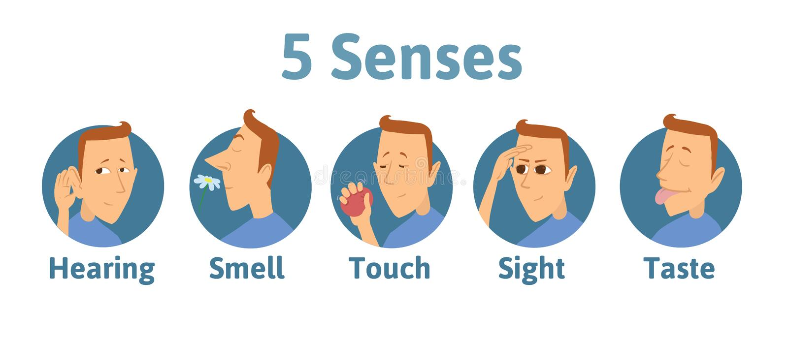 Set of five human senses icon: hearing, smell, touch, vision, taste. Icons with funny man character in circles. Vector stock illustration